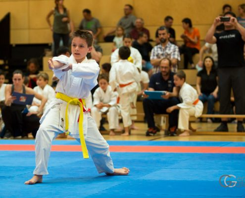 Dornbirner Karate Cup 2018 KARATE HOFSTEIG Kata Kumite