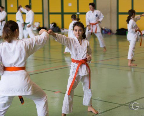 KARATE HOFSTEIG Karate Lehrgang Silvio Campari 2018 Lauterach