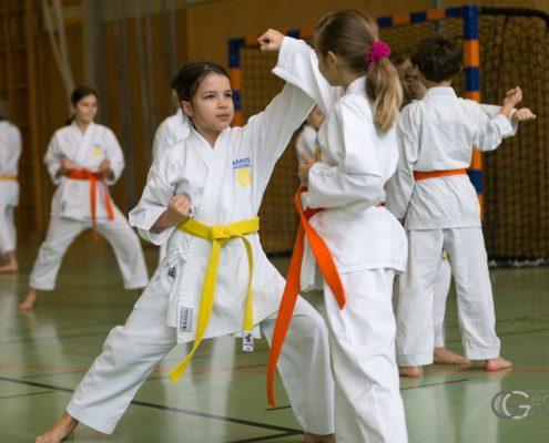 KARATE HOFSTEIG Karate Lehrgang Silvio Campari 2018 Lauterach Sara Hubmann