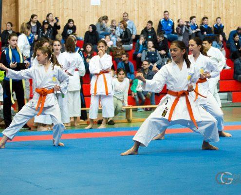Dornbirner Karate Cup 2019 KARATE HOFSTEIG Antonia Veits Kathalina Grafoner Michelle Flecker
